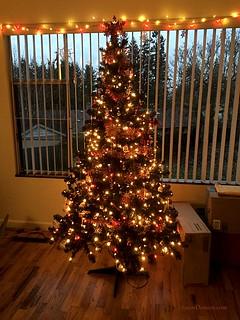 20161215-Xmas Tree
