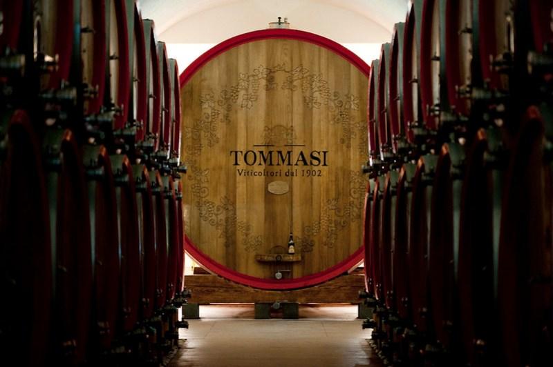 Tommasi - Magnifica Oak Cask