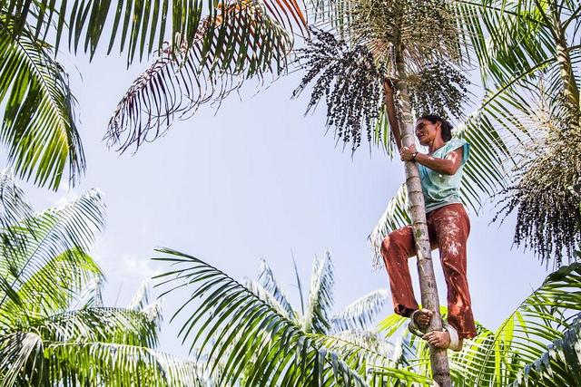 Eu recomendo. Quilombolas do Pará temem impacto da ferrovia Norte-Sul, Comunidade de Laranjituba. Foto - Brasil de Fato