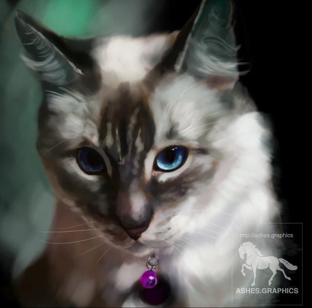 Kitty Speedpainting