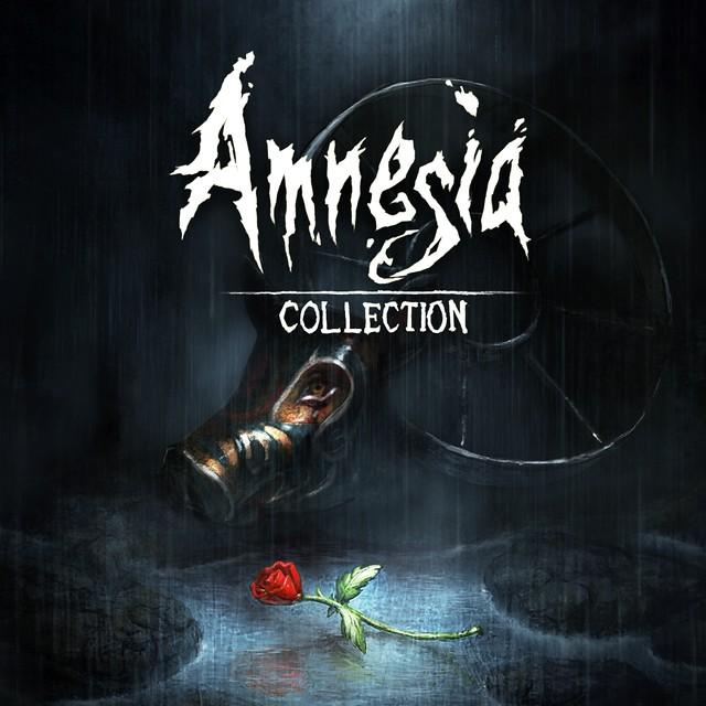 Amensia Collection