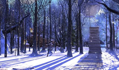 ~ The Fresh Snow ~
