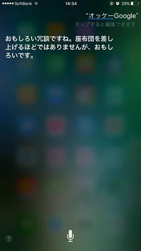 Siriに「オッケーGoogle」と言ってみた。