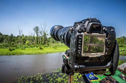Long Lens at Lake Connestee