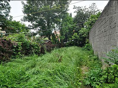 tuin voor 2