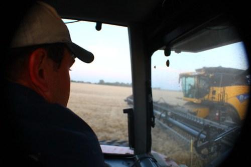 Riding shotgun in the grain cart.