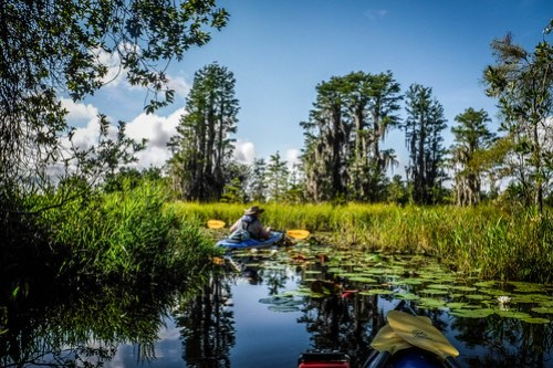 Lowcountry Unfiltered at Okefenokee-051