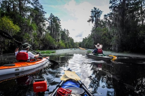 Lowcountry Unfiltered at Okefenokee-072
