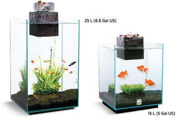 Aquariums De Table Incroyables