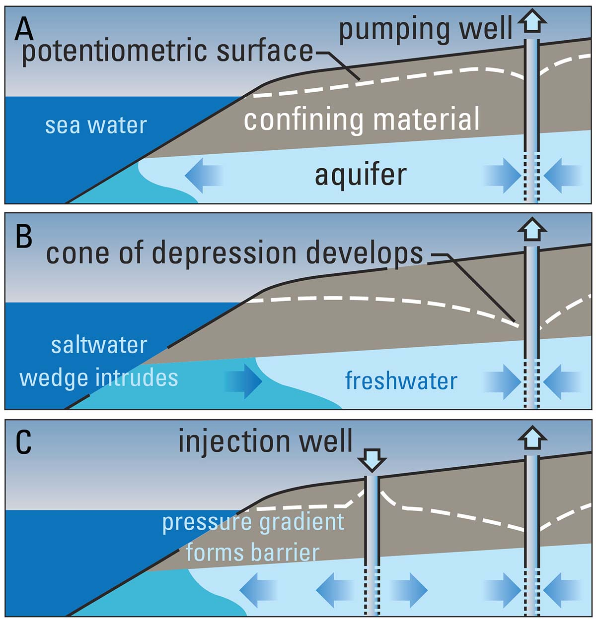 hight resolution of illustration of how the seaward movement of freshwater prevents seawater from encroaching coastal aquifers