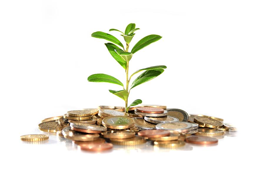 Betfair Strategy Grow Money