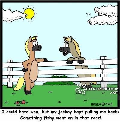 Horse Racing Trading Betfair
