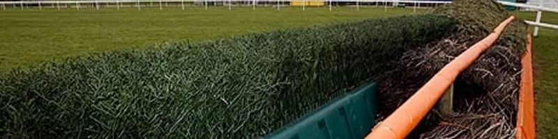 Brush Fence NH