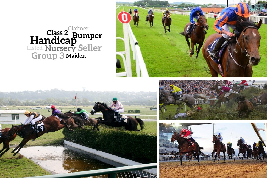 Horse racing types and grades image