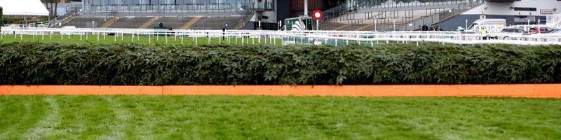 Large Hurdle Horse Race