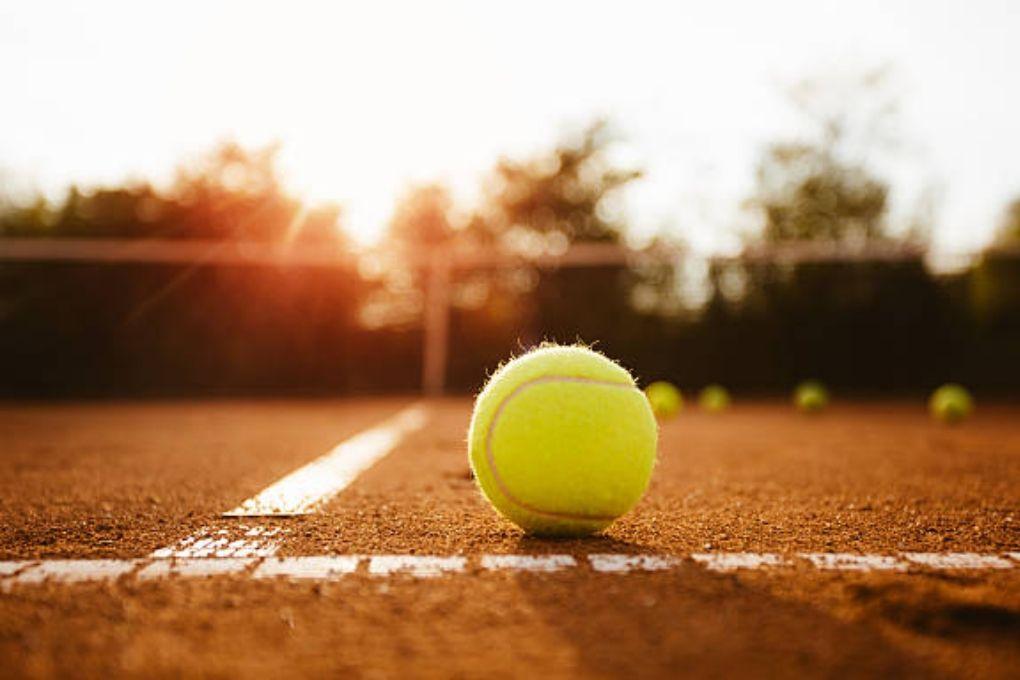 Tennis Ball Court
