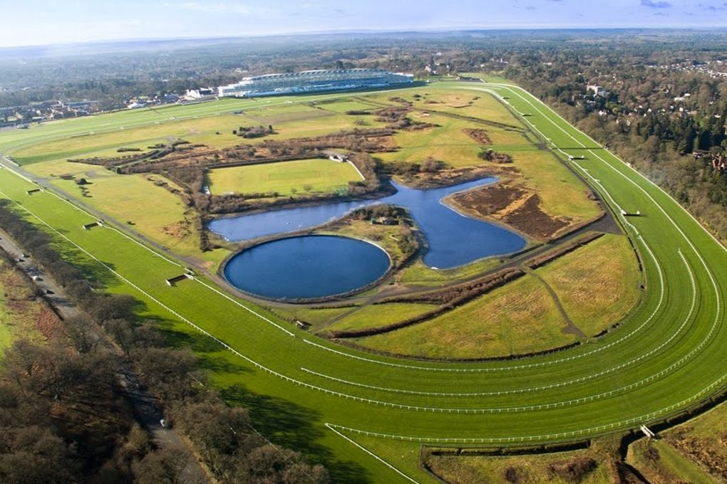 UK Horse Racing Track Types