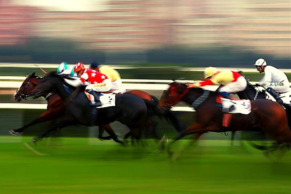 Horse Racing Blurred