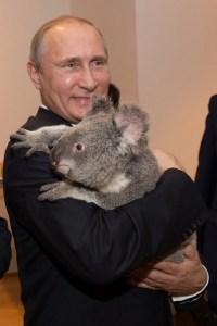 G20 summit in Brisbane