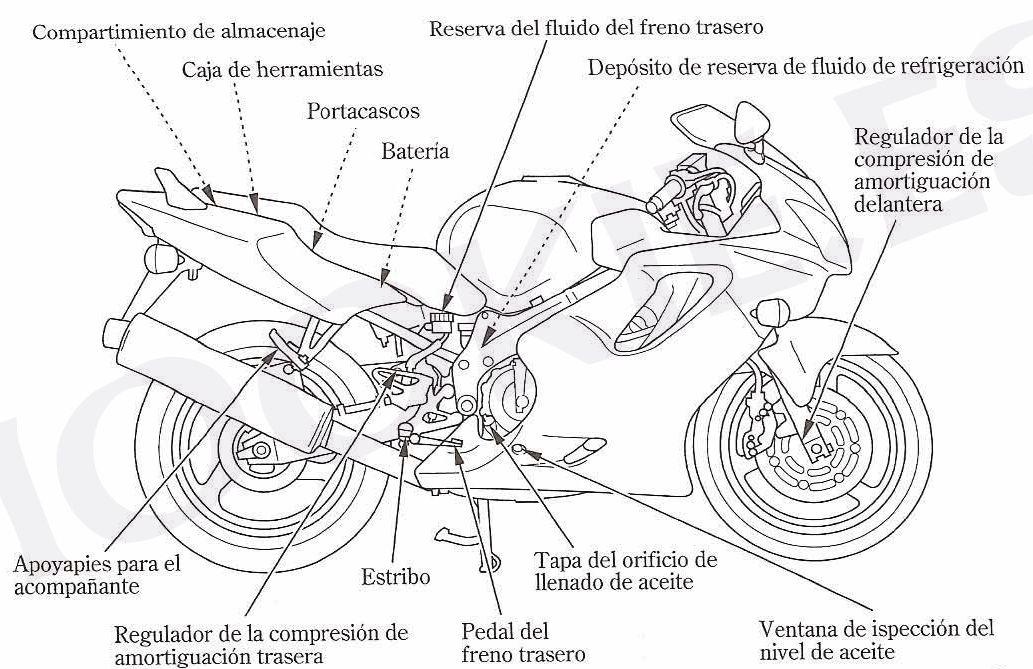 Leds para moto