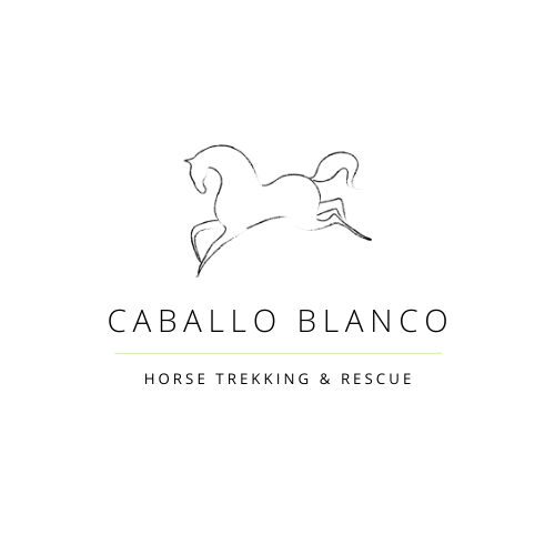 caballo blanco horse trekking rescue spain logo