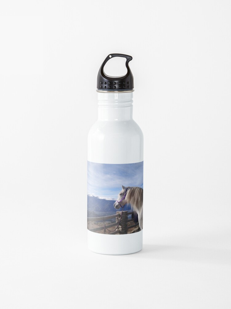 horse mare water bottle