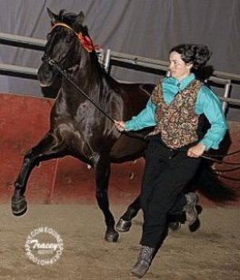 lisca_trot2