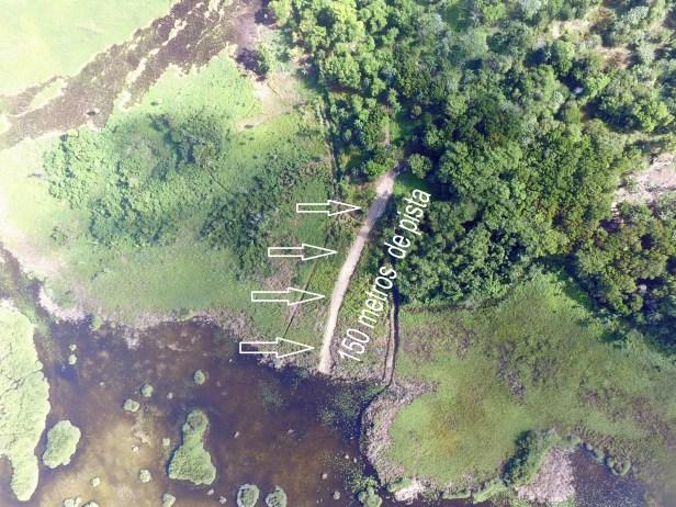 pista hecha a dentro de area protegida atras del proyecto Seawinds