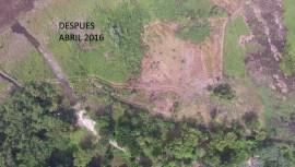 Area secada por accion humana en el parque nacional