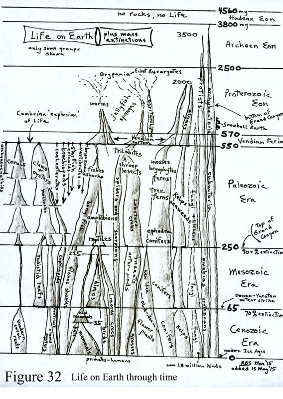 Life on Earth flow chart, GEOLOGICAL HISTORY OF THE SOUTHWEST