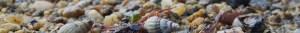 cabinet-hypnose-vannes