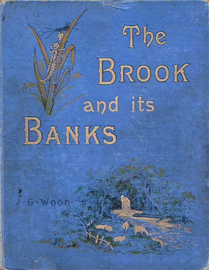 brookanditsbanks