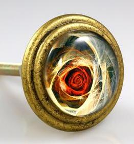 Charleston Knob Company Rose Signature Brass Cabinet Knob