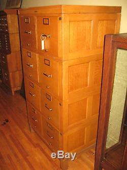 Antique Globe Wernicke File Cabinet 8 Drawer Quartered Oak