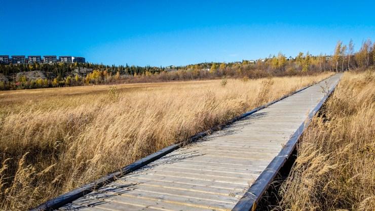 Yellowknife's Rotary Park boardwalk