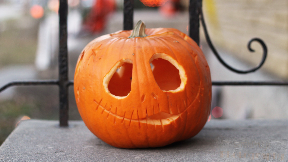 Pumpkin panic-buyer beware: YK shelves empty