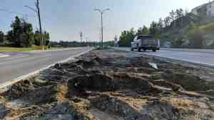 A file photo of the Franklin Avenue median void of rocks. Sarah Pruys/Cabin Radio