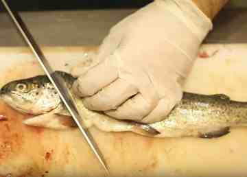 A still from Liang Chen's winning Win Your Space video shows a fish being prepared