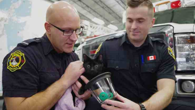 Firefighters Jamie Stringer, left, and Anton Sergeev fit an oxygen mask onto six-month-old kitten Quana