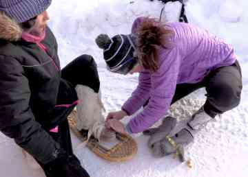 Holly Jones helps an athlete with their snowshoe
