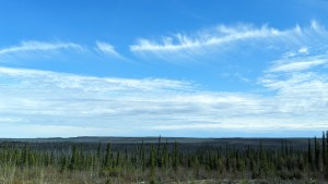 Highway 3 near Mosquito Creek in June 2020. Sarah Pruys/Cabin Radio