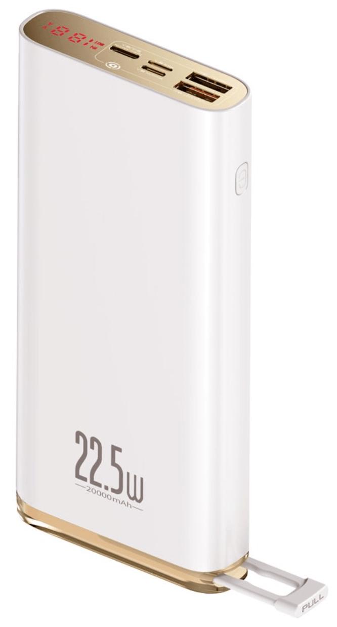 BASEUS Starlight Digital Display Quick Charge Power Bank 22.5W 20000mAh