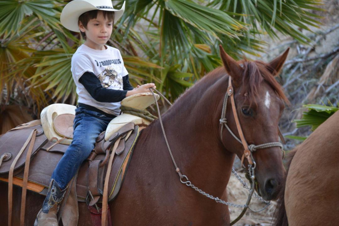 boy horseback wild canyon