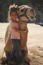 camel encounter hugging a camel in cabo san lucas at wild canyon