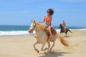best advanced horseback riding in cabo migrino beach cactus atv tours cabo adventures cabosanlucastours