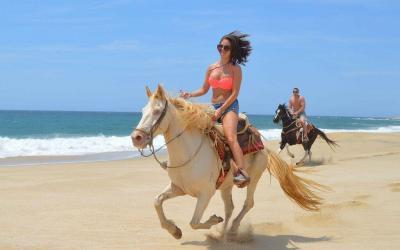 horse back riding in los cabos, ride a horse on the beach of cabo san lucas