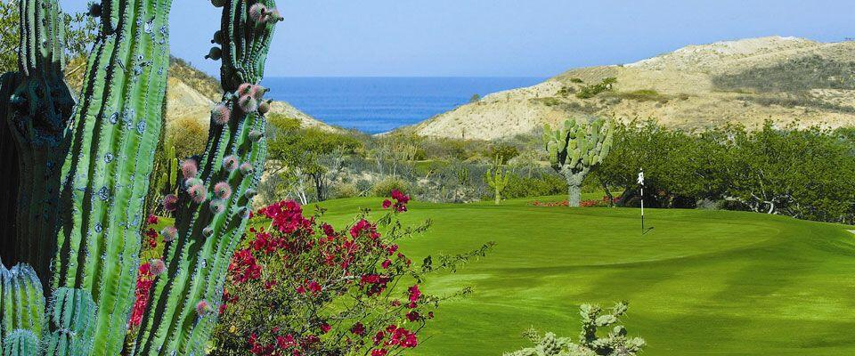 Palmilla Golf course Mountain, Cabo San Lucas, golf deals, golf packages, ocean course, questro golf, cabo del sol discounted golf deals diamante los cabos