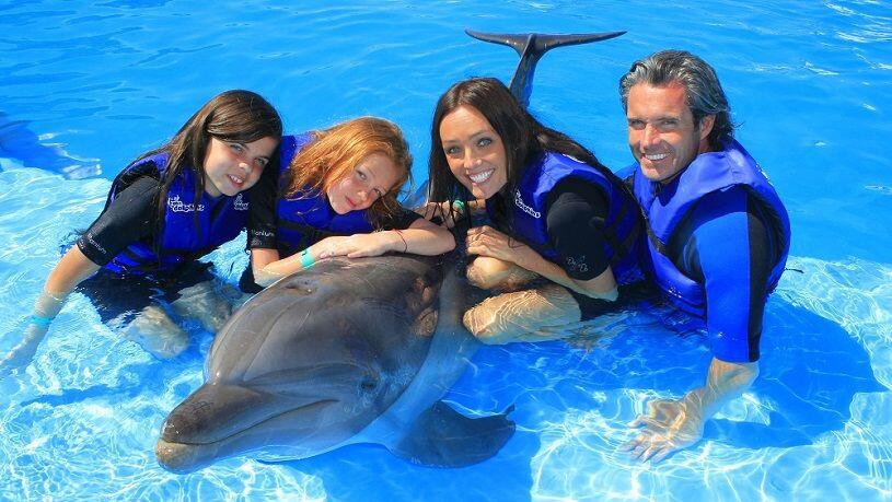 private-dolphin-experience