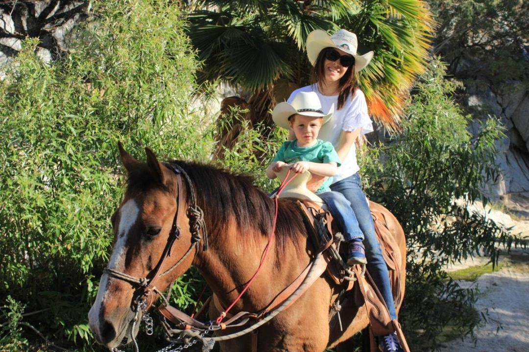 great fandango cabo horseback riding tours mother and child