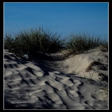 sea sand...